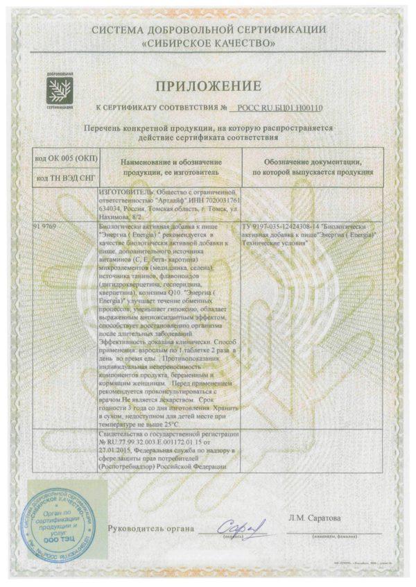 приложение к сертификату энергия