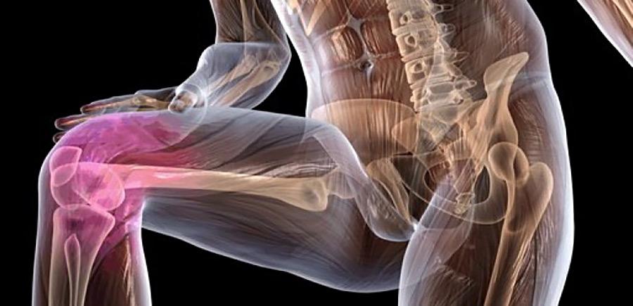 Укрепление хрящевой ткани суставов