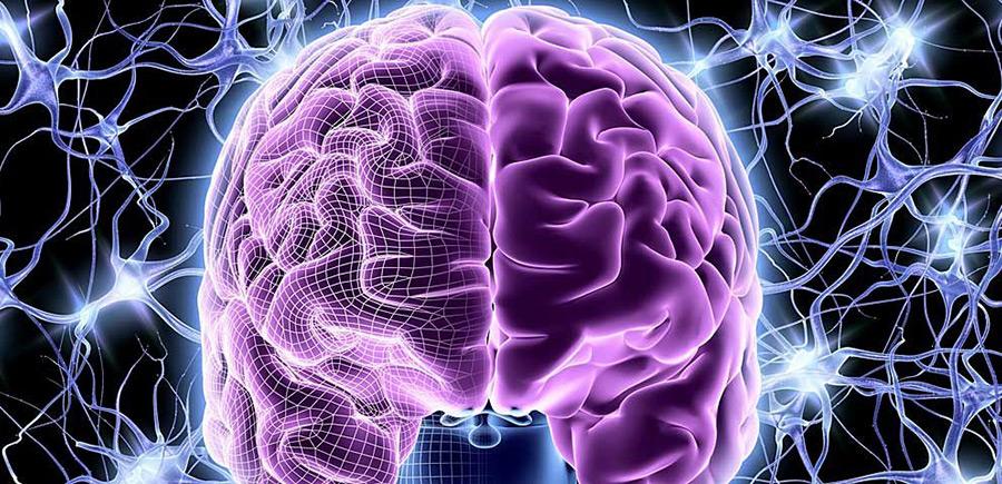 Сосудистые проблемы головного мозга